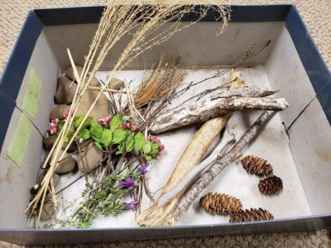 Box filled with leaves, sticks, twigs and acorns